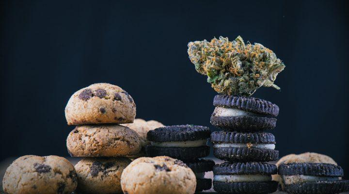 4 Geschäftsideen rund um Marihuana