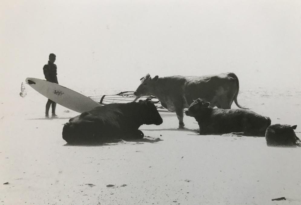boardandbed an einem der Spots in Tarifa